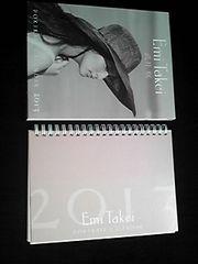武井咲 PORTRAIT CALENDAR 2013 オフィシャルカレンダー 即決