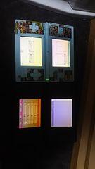 DSライト ジャンク2台液晶動作確認