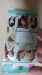 AKB48オフシャルトレンディングカ-ド