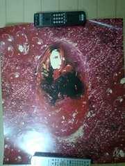 X JAPAN hide �|�X�^�[ ������ �q�f2