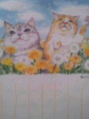 新品『郵便局 猫とたんぽぽのポストカード』