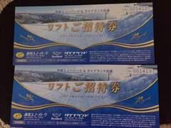 高鷲スノーパーク、ダイナランド共通リフト1日券2枚セット