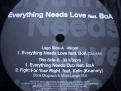 Mondo Grosso���޸�ۯ�feat. BoA�ޱ  �Everything Needs Love�