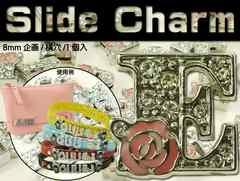 Eスライドチャームパーツバラ1個 首輪やコインケースに Adc9031
