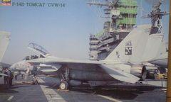 1/48 ハセガワ アメリカ海軍 F-14D トムキャット CVW-14
