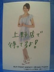 ご当地スペシャル第4弾 上野・メタリックL判1枚 2008.6.6/岡田唯