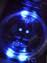 目立ちたい人に(^-^)/LED光る靴紐ブルー