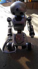 ロボット I-DOI ジャンク扱い