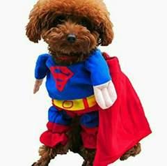 送料無料 スーパーマン 小型犬 猫 洋服 コスプレ xs ハロウィン