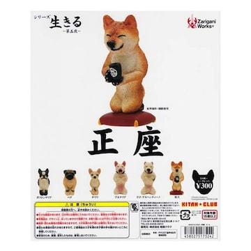 ザリガニ シリーズ 生きる 第五夜 正座 6種 ガチャポン 朝隈俊男犬の本音