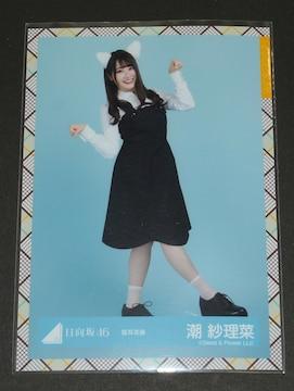 日向坂46 生写真1枚 潮紗理菜 「猫耳衣装」