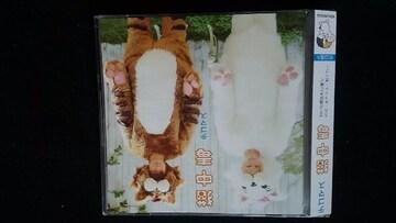 テゴマス 猫中毒 初回限定盤DVD ミュージックビデオ 手越祐也