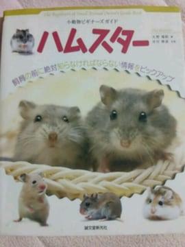 小動物【ハムスター】ビギナーズガイド