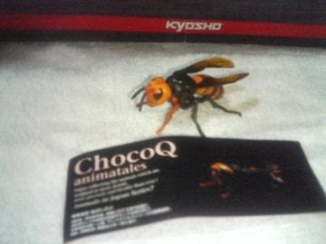 チョコQ アニマルテイルズ7  オオスズメバチ  自然界の魔王