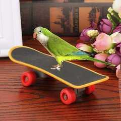 鳥さん用 スケートボード オウム インコ おもちゃ 1/BY5