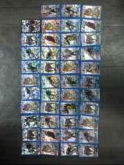 ワイルドキングキラカード43枚詰め合わせ福袋