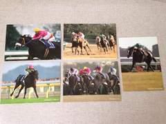 JRA 競馬 ポストカード 5枚セット