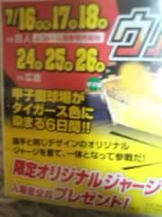 【ウル虎】7/24(火)阪神vs広島ライト5連番独立エリア両側通路(大4小1)