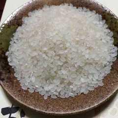 28年 山形県 庄内産【つや姫】玄米20�s 特別栽培米!美味い☆