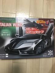 ITALIAN WING ラジコン