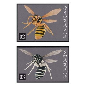 すずめばち SUZUMEBACHI 2種セット バンダイ ガチャポン フィギュア スズメバチ