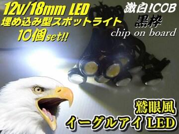 バイク用ボルト型デイライト/黒色イーグルアイLED/10個/ホワイト