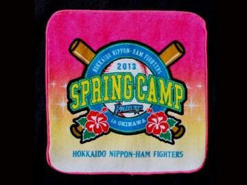 ☆【日本ハムファイターズ】2013 SPRING CAMP ハンドタオル(赤)