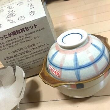 新品 1人用 雑炊丼セット レンゲ付 陶器