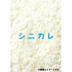 ■DVD『シニカレ BOX』藤ヶ谷太輔(キスマイ・ジャニーズ) 桐谷美玲