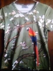 和柄 花鳥風月 鳥と桜 新品未使用 送料込み
