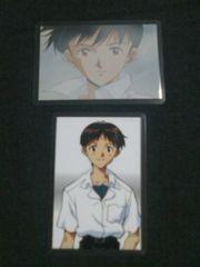 ◆エヴァンゲリオン/ラミカ/碇シンジ/2枚