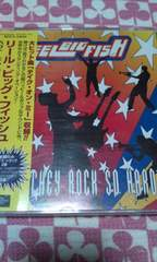 Reel big fish/Why do they rock〜スカ