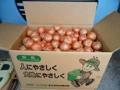 【農家直送】北海道産小さい玉ねぎ 20kg 送料安
