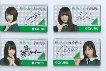 『欅坂46』キシリトール マグネットシート全4種セット