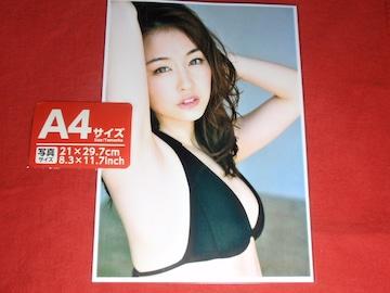 a★新井 恵理那(あらい えりな)人気女子アナ A4判
