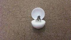 【新品】(広島カープ)スラィリー スラィリング 指輪 シルバー