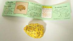 【ベルツノガエル】チョコエッグ・太っちょガエル