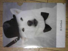 Softbank お父さん犬のクリアファイル(帽子と蝶ネクタイ)新品