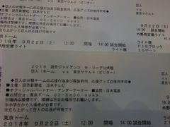 9月22日巨人vsヤクルトライト外野指定席5〜7列ペア�@