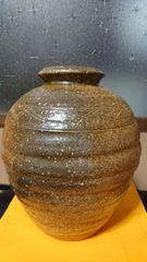 古信楽焼→波状紋→褐色釉→種壺