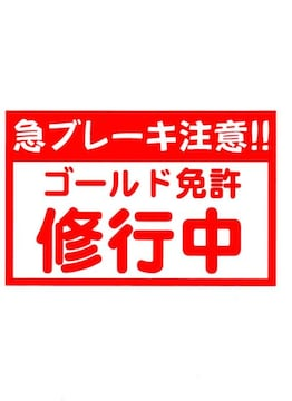 急ブレーキ注意!!(ゴールド免許修行中) カッティング