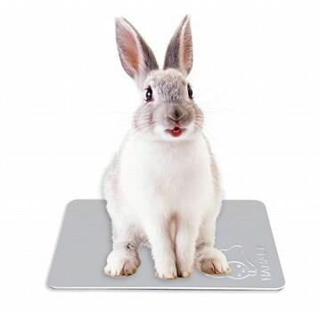 冷感 ウサギ ひんやりプレート 20*30cm //byy
