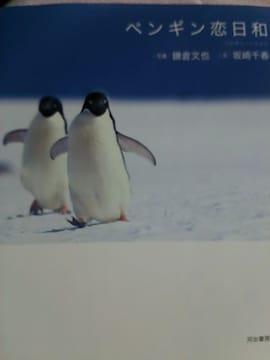 写真集【ペンギン】恋日和