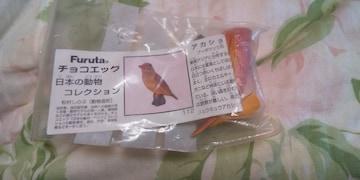 アカショウビン★チョコエッグ 日本の動物コレクション■Furuta